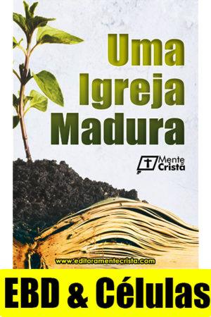 uma igreja madura - maturidade cristã - revista de escola bíblica dominical